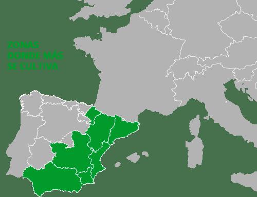 Zonas donde más se cultiva