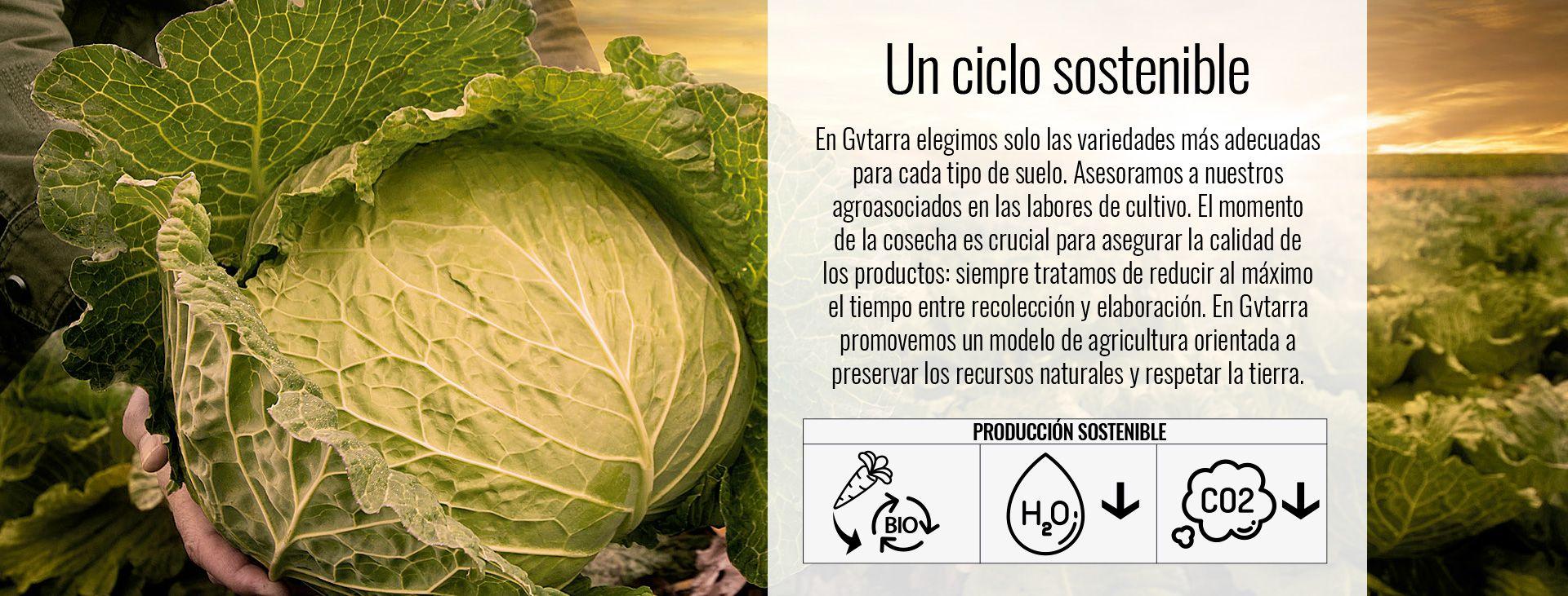 Un ciclo sostenible